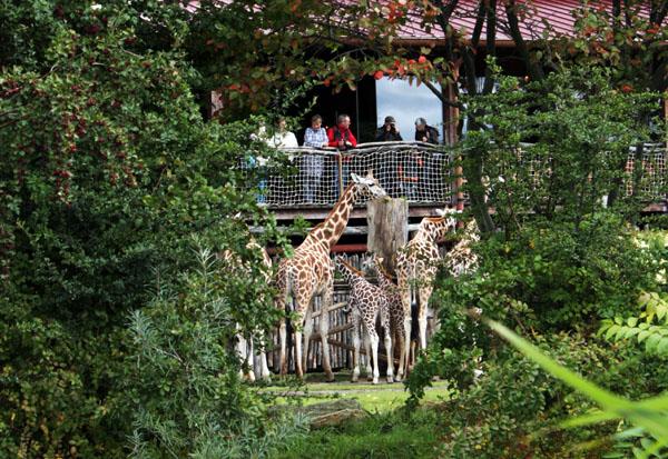 Zooschaufenster im Rosental Leipzig