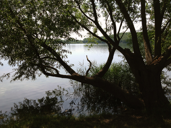 Kulkwitzer See Leipzig