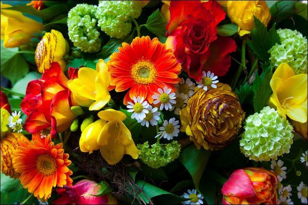 Blumen Leipzig