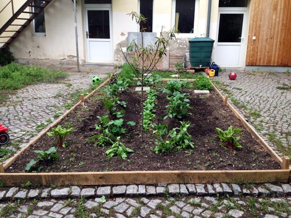 garten ernten hof