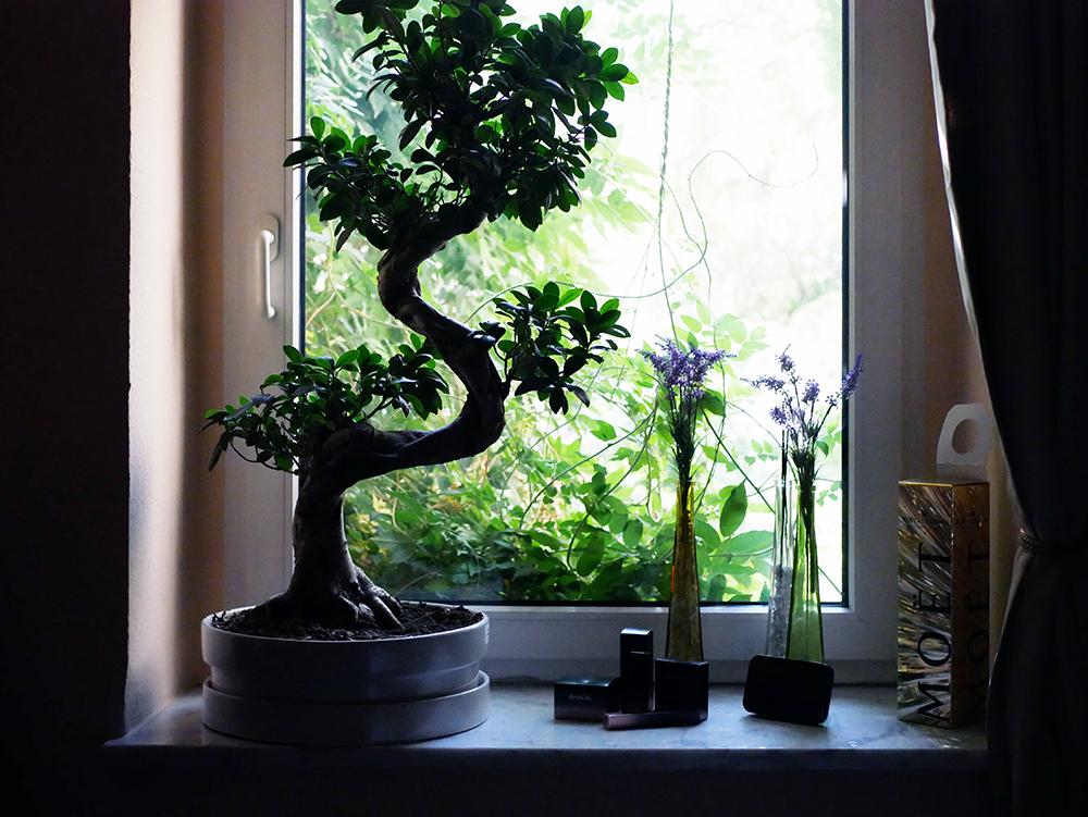 VitaSomnium Flora